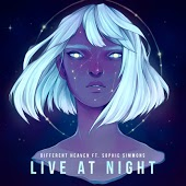 Different Heaven feat. Sophie Simmons - Live At Night