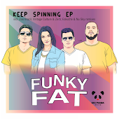 Funky Fat - Keep Spinning (Vintage Culture & Zerb Remix)